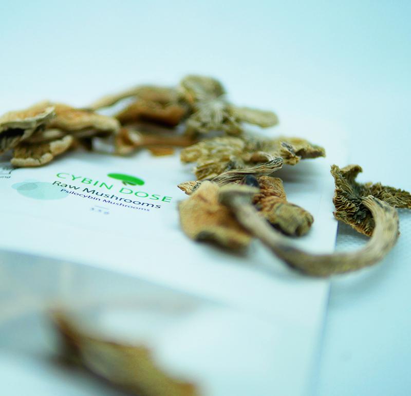 Raw Mushroom Packaging Coseup